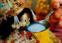 Maitoa juova hindujumala Ganeshan patsas